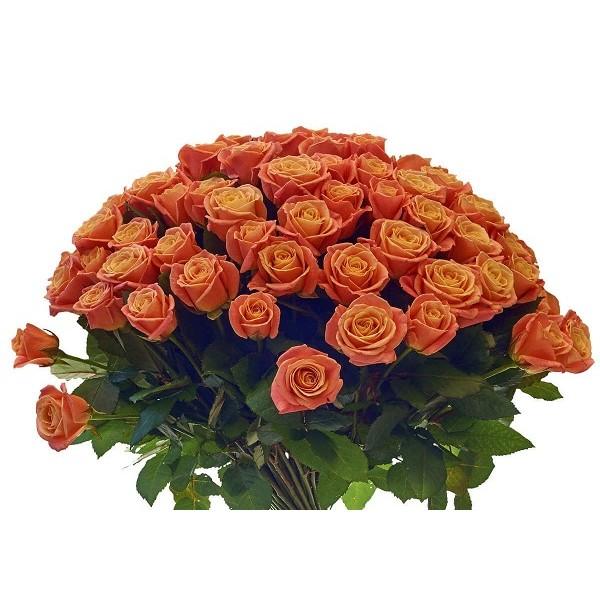 Срезка Роза Оранжевая (Кения)